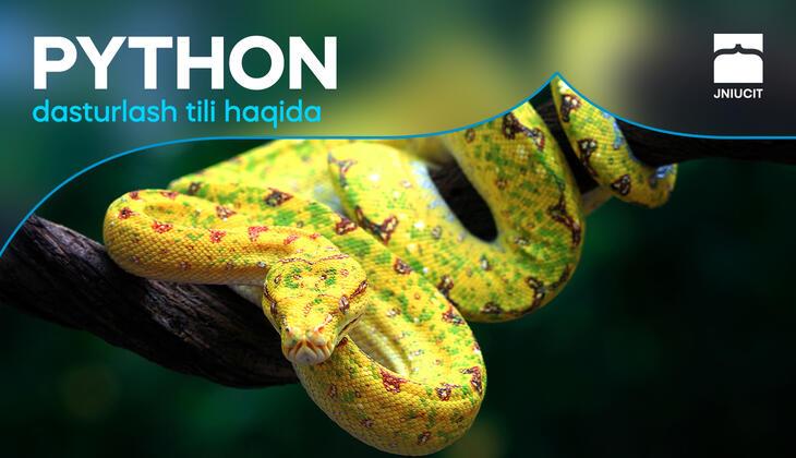 Python dasturlash tili haqida.