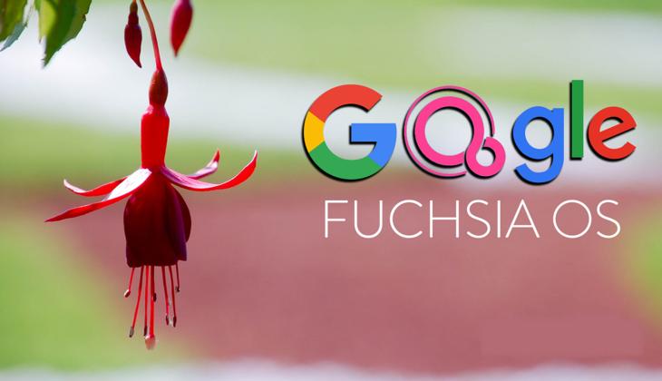 «Android» o'rnini «Fuchsia» egallaydi: farqi nimada?